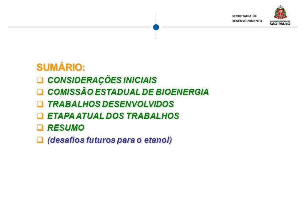 CONSIDERANDO O aumento no consumo mundial de energia O aumento no consumo mundial de energia As reservas mundiais de petróleo As reservas mundiais de petróleo O preço do petróleo e sua possível evolução O preço do petróleo e sua possível evolução O custo ambiental dos combustíveis fósseis O custo ambiental dos combustíveis fósseis A competitividade do agronegócio brasileiro A competitividade do agronegócio brasileiro A grande disponibilidade de terras agricultáveis no Brasil, o que possibilita que uma agricultura de energia conviva com uma de alimentos A grande disponibilidade de terras agricultáveis no Brasil, o que possibilita que uma agricultura de energia conviva com uma de alimentos Que o Brasil é um forte exportador líquido de produtos do agronegócio Que o Brasil é um forte exportador líquido de produtos do agronegócio Que a posição de destaque do Brasil em bioenergia é em grande parte devida ao Estado de São Paulo Que a posição de destaque do Brasil em bioenergia é em grande parte devida ao Estado de São Paulo