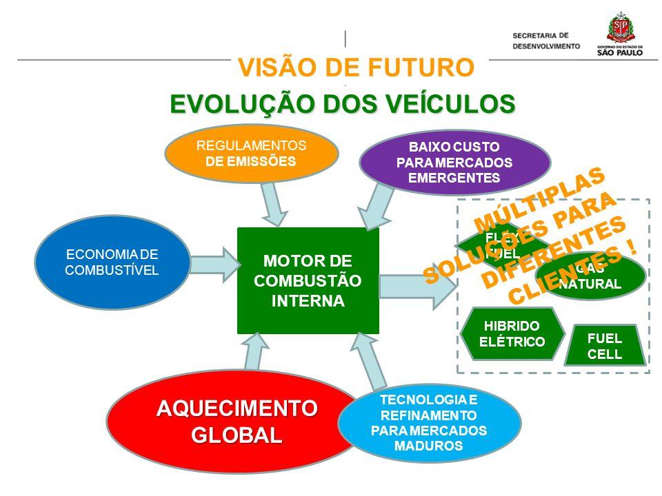 EVOLUÇÃO DOS VEÍCULOS MOTOR DE COMBUSTÃO INTERNA AQUECIMENTO GLOBAL ECONOMIA DE COMBUSTÍVEL REGULAMENTOS DE EMISSÕES BAIXO CUSTO PARA MERCADOS EMERGEN