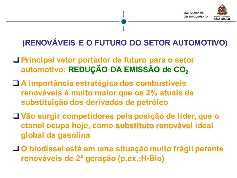 (RENOVÁVEIS E O FUTURO DO SETOR AUTOMOTIVO) Principal vetor portador de futuro para o setor automotivo: REDUÇÃO DA EMISSÃO de CO 2 A importância estra