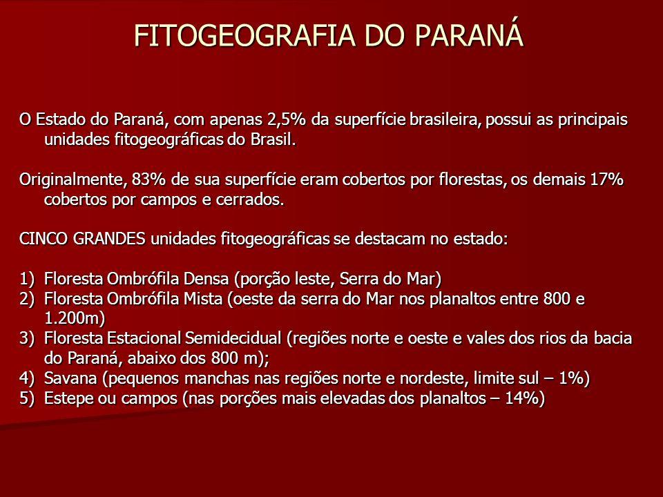 FITOGEOGRAFIA DO PARANÁ O Estado do Paraná, com apenas 2,5% da superfície brasileira, possui as principais unidades fitogeográficas do Brasil. Origina