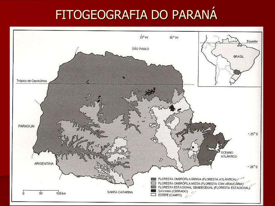 FITOGEOGRAFIA DO PARANÁ