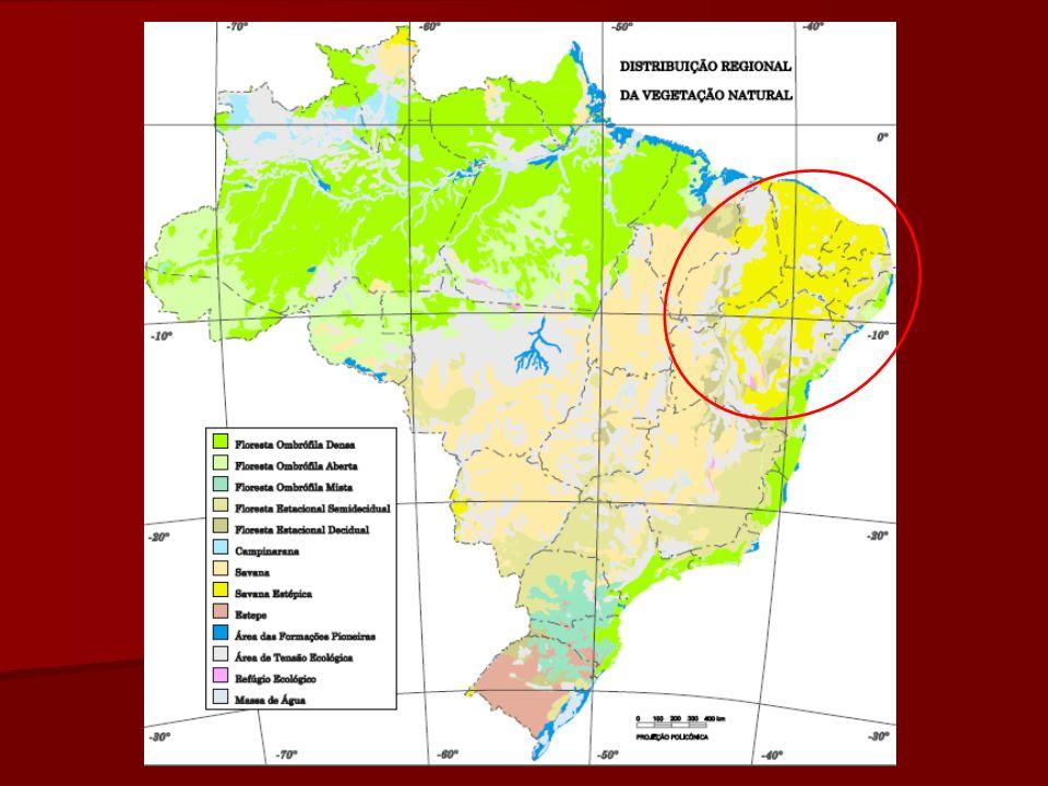 Caatinga Há uma divisão da caatinga em dois tipos de paisagem, com base nos graus de umidade.