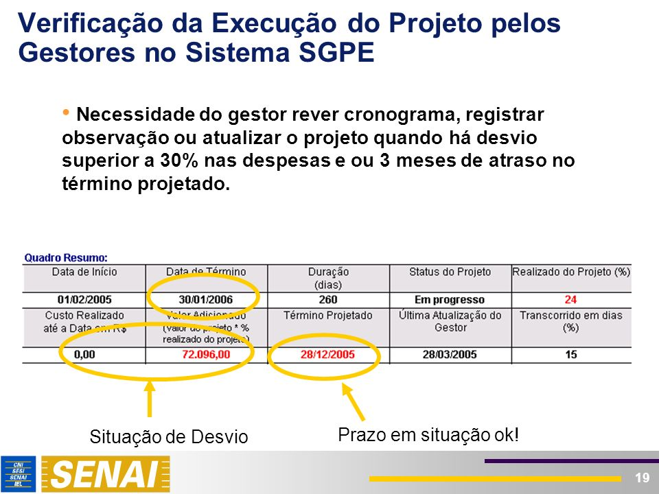 19 Verificação da Execução do Projeto pelos Gestores no Sistema SGPE Necessidade do gestor rever cronograma, registrar observação ou atualizar o proje