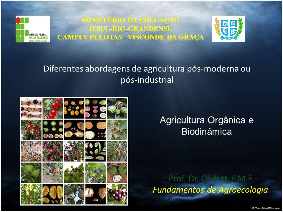 Prof. Dr. Corlett, F.M.F Fundamentos de Agroecologia MINISTÉRIO DA EDUCAÇÃO IFSUL-RIO-GRANDENSE CAMPUS PELOTAS - VISCONDE DA GRAÇA Diferentes abordage