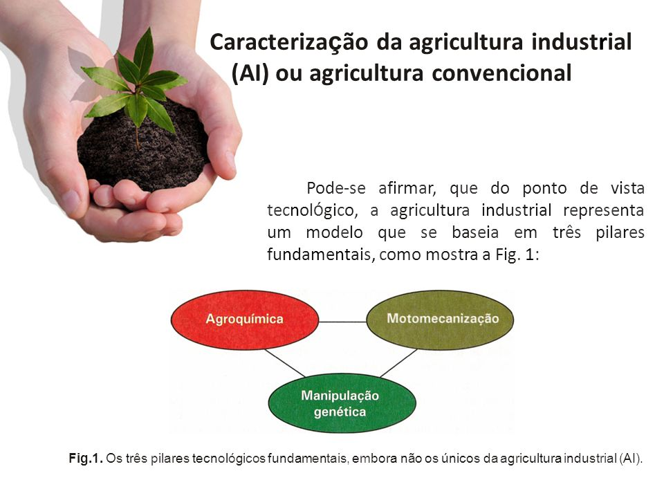 Caracteriza ç ão da agricultura industrial (AI) ou agricultura convencional Pode-se afirmar, que do ponto de vista tecnol ó gico, a agricultura indust