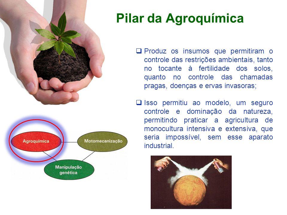 Pilar da Agroquímica Produz os insumos que permitiram o controle das restrições ambientais, tanto no tocante à fertilidade dos solos, quanto no contro