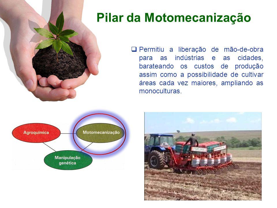 Pilar da Motomecanização Permitiu a liberação de mão-de-obra para as indústrias e as cidades, barateando os custos de produção assim como a possibilid