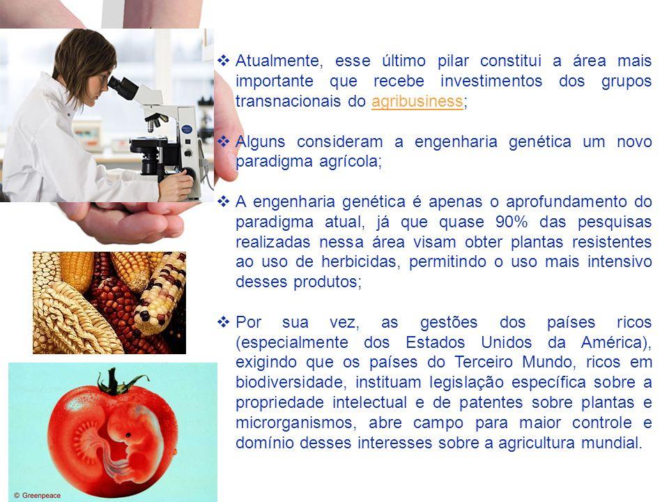 Atualmente, esse último pilar constitui a área mais importante que recebe investimentos dos grupos transnacionais do agribusiness;agribusiness Alguns