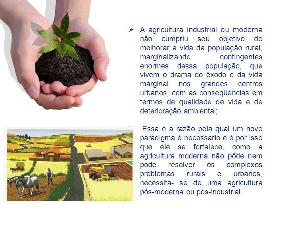 A agricultura industrial ou moderna não cumpriu seu objetivo de melhorar a vida da população rural, marginalizando contingentes enormes dessa populaçã