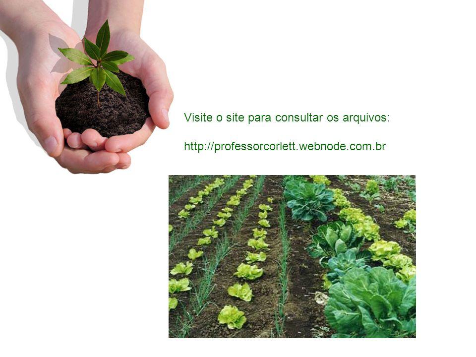 Visite o site para consultar os arquivos: http://professorcorlett.webnode.com.br