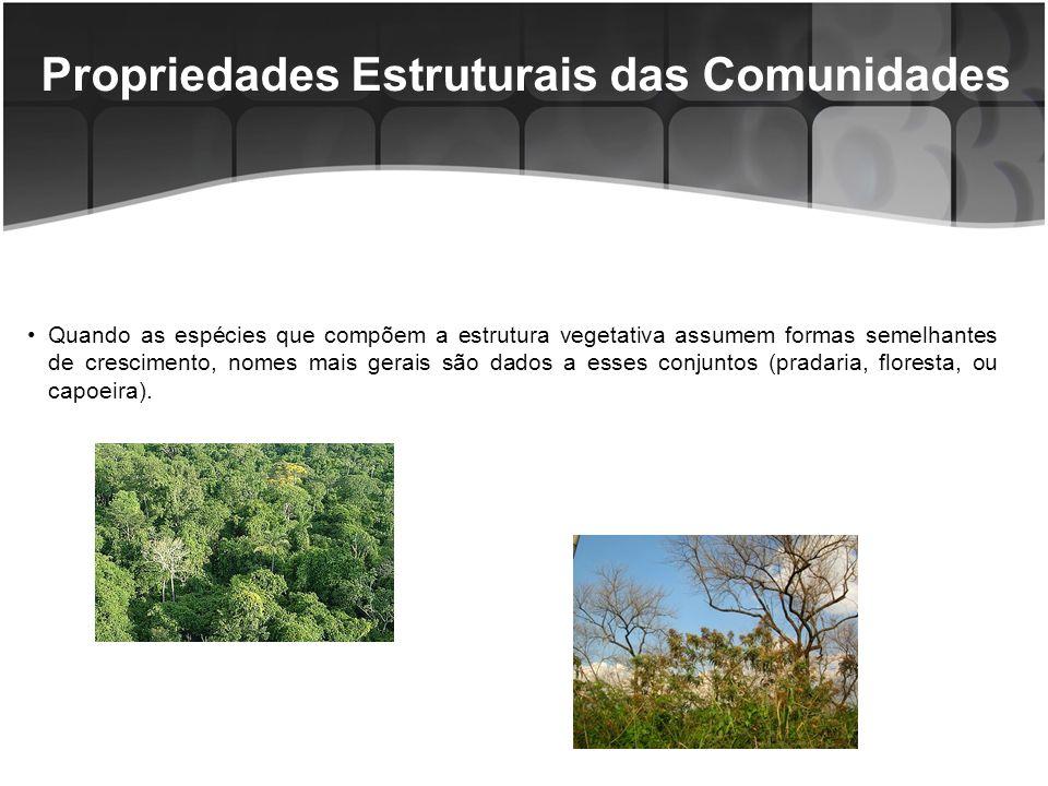 Propriedades Estruturais das Comunidades Quando as espécies que compõem a estrutura vegetativa assumem formas semelhantes de crescimento, nomes mais gerais são dados a esses conjuntos (pradaria, floresta, ou capoeira).