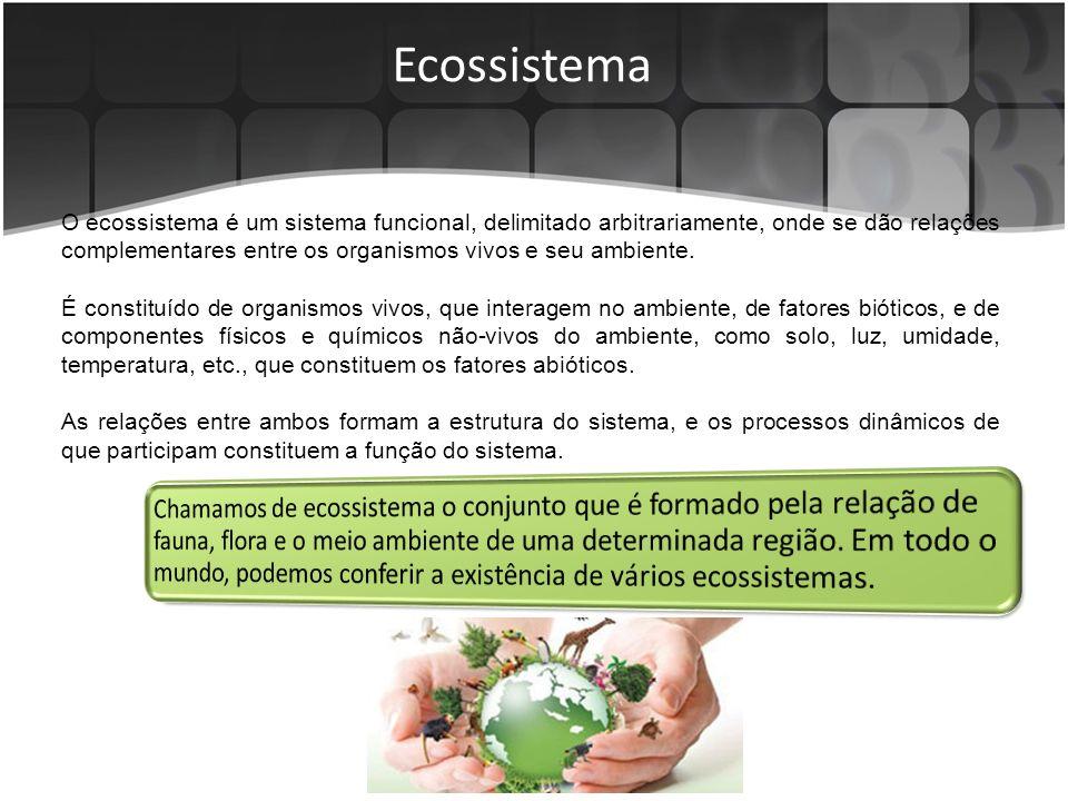 Ecossistema O ecossistema é um sistema funcional, delimitado arbitrariamente, onde se dão relações complementares entre os organismos vivos e seu ambiente.