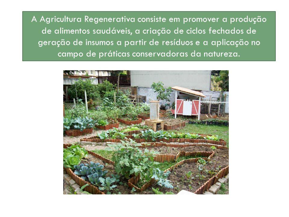 A Agricultura Regenerativa consiste em promover a produção de alimentos saudáveis, a criação de ciclos fechados de geração de insumos a partir de resí