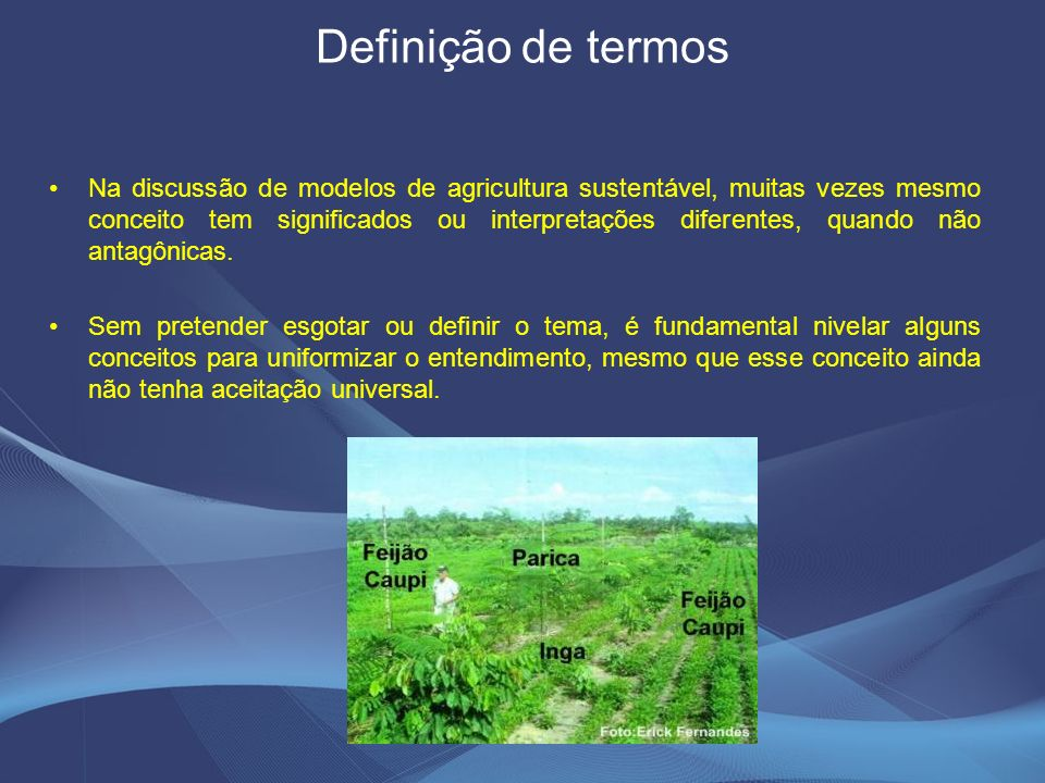Definição de termos Na discussão de modelos de agricultura sustentável, muitas vezes mesmo conceito tem significados ou interpretações diferentes, quando não antagônicas.