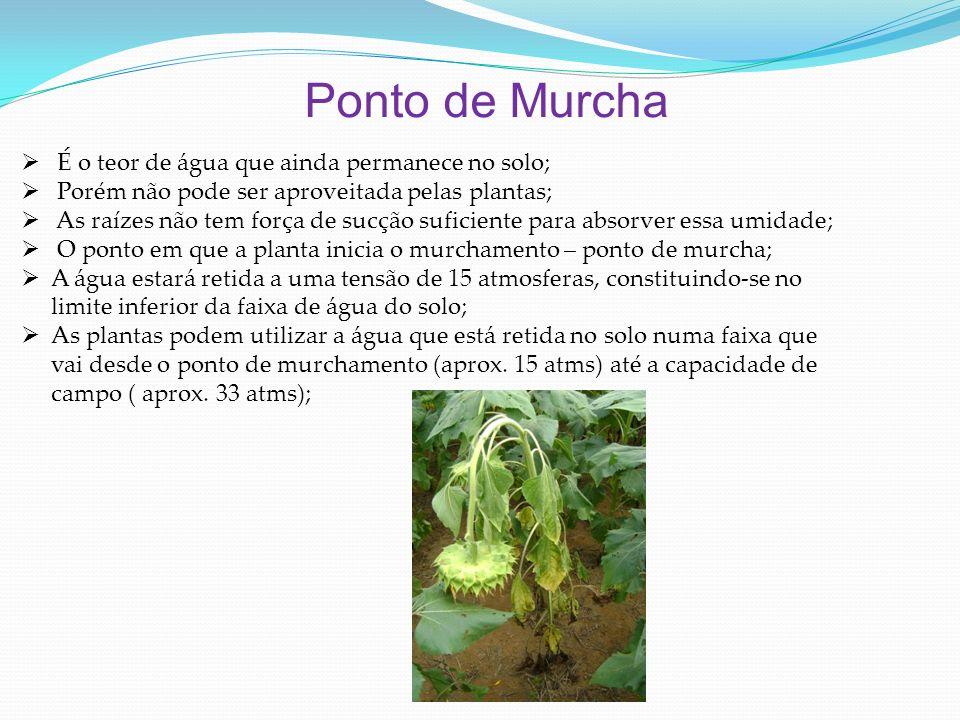 Ponto de Murcha É o teor de água que ainda permanece no solo; Porém não pode ser aproveitada pelas plantas; As raízes não tem força de sucção suficien