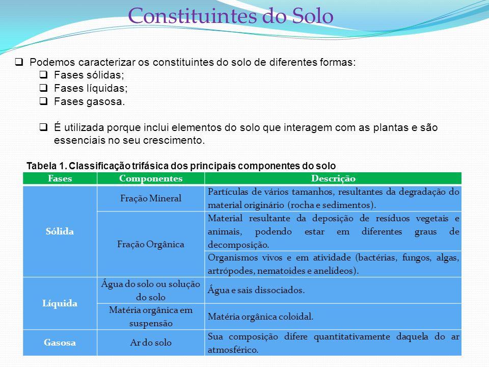 Constituintes do Solo Podemos caracterizar os constituintes do solo de diferentes formas: Fases sólidas; Fases líquidas; Fases gasosa. É utilizada por