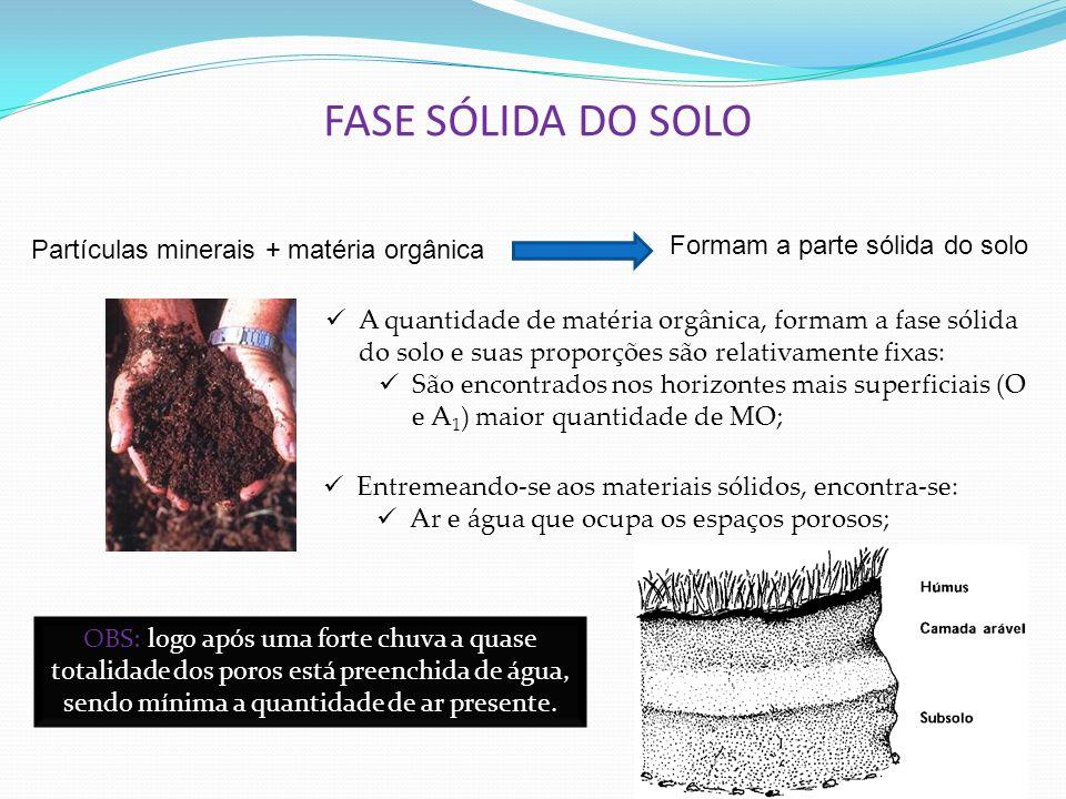 FASE SÓLIDA DO SOLO Partículas minerais + matéria orgânica Formam a parte sólida do solo A quantidade de matéria orgânica, formam a fase sólida do sol