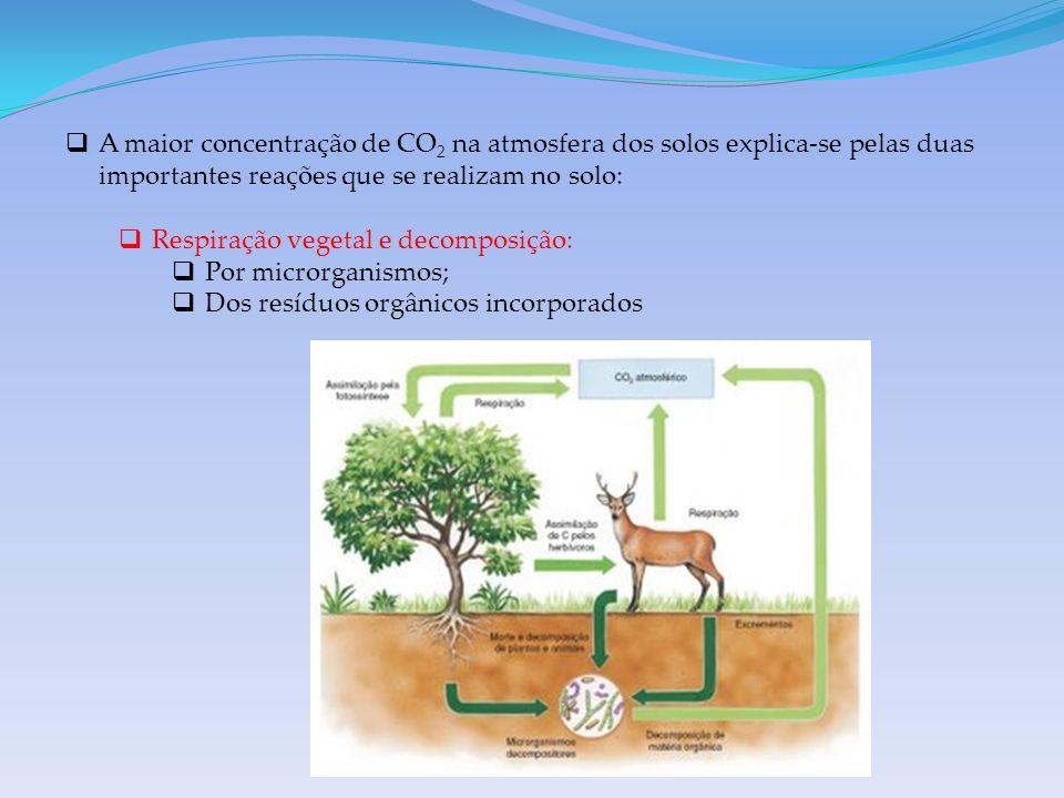A maior concentração de CO 2 na atmosfera dos solos explica-se pelas duas importantes reações que se realizam no solo: Respiração vegetal e decomposição: Por microrganismos; Dos resíduos orgânicos incorporados