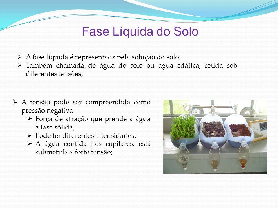 Fase Líquida do Solo A fase líquida é representada pela solução do solo; Também chamada de água do solo ou água edáfica, retida sob diferentes tensões