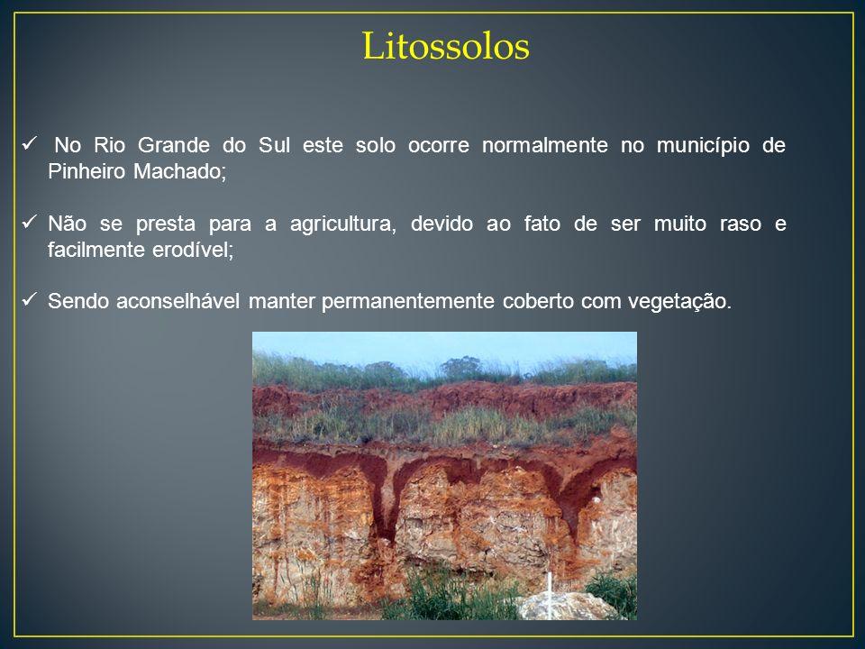 Litossolos No Rio Grande do Sul este solo ocorre normalmente no município de Pinheiro Machado; Não se presta para a agricultura, devido ao fato de ser