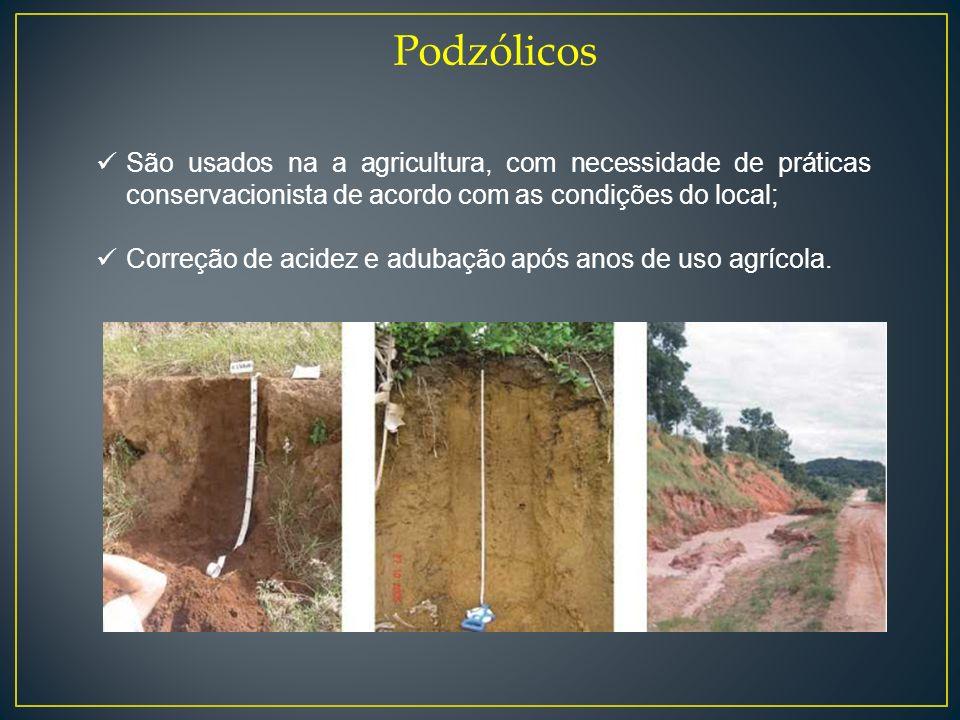 Podzólicos São usados na a agricultura, com necessidade de práticas conservacionista de acordo com as condições do local; Correção de acidez e adubaçã