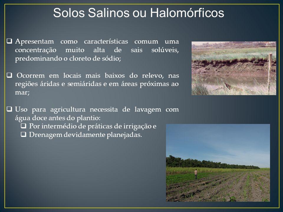 Solos Salinos ou Halomórficos Apresentam como características comum uma concentração muito alta de sais solúveis, predominando o cloreto de sódio; Oco