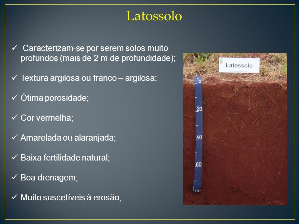 Latossolo Caracterizam-se por serem solos muito profundos (mais de 2 m de profundidade); Textura argilosa ou franco – argilosa; Ótima porosidade; Cor