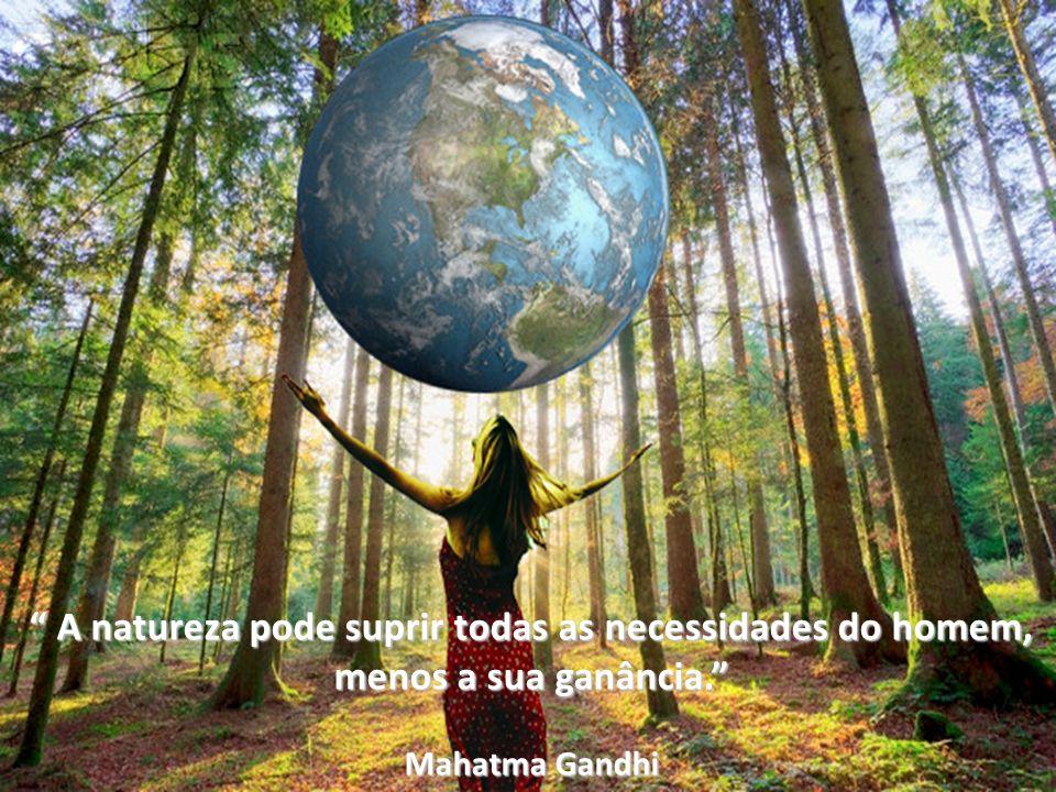 A natureza pode suprir todas as necessidades do homem, A natureza pode suprir todas as necessidades do homem, menos a sua ganância. Mahatma Gandhi