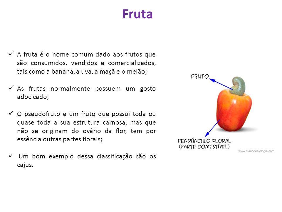 A fruta é o nome comum dado aos frutos que são consumidos, vendidos e comercializados, tais como a banana, a uva, a maçã e o melão; As frutas normalme