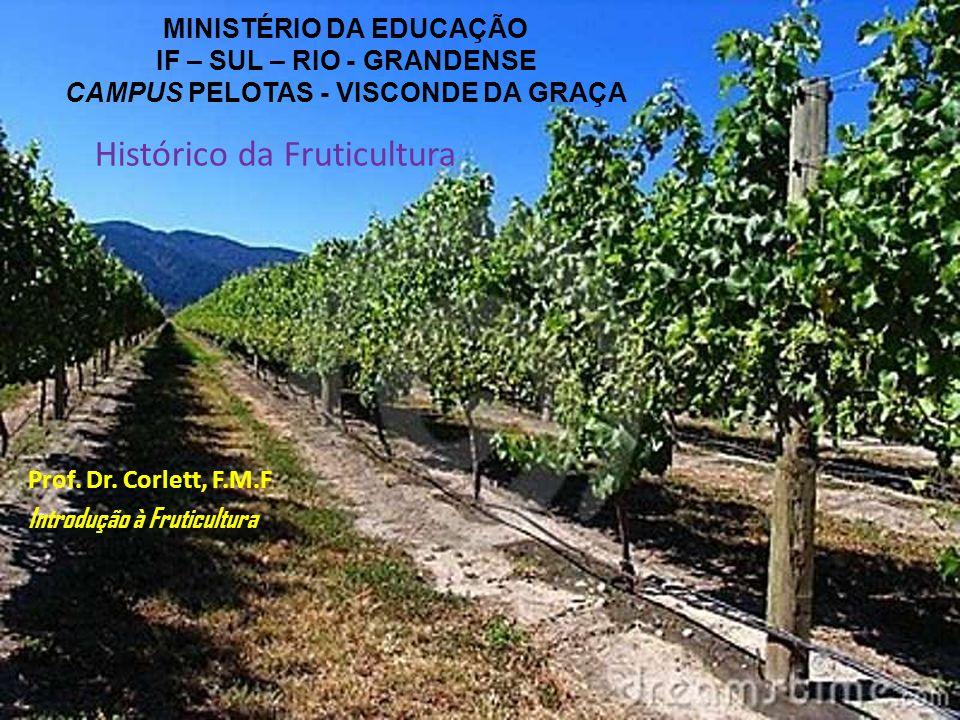MINISTÉRIO DA EDUCAÇÃO IF – SUL – RIO - GRANDENSE CAMPUS PELOTAS - VISCONDE DA GRAÇA Prof. Dr. Corlett, F.M.F Introdução à Fruticultura Histórico da F