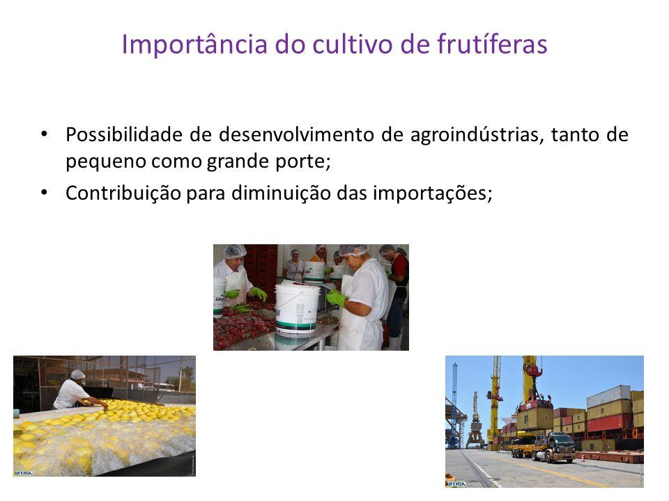 Importância do cultivo de frutíferas Possibilidade de desenvolvimento de agroindústrias, tanto de pequeno como grande porte; Contribuição para diminui