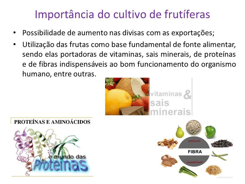 Importância do cultivo de frutíferas Possibilidade de aumento nas divisas com as exportações; Utilização das frutas como base fundamental de fonte ali