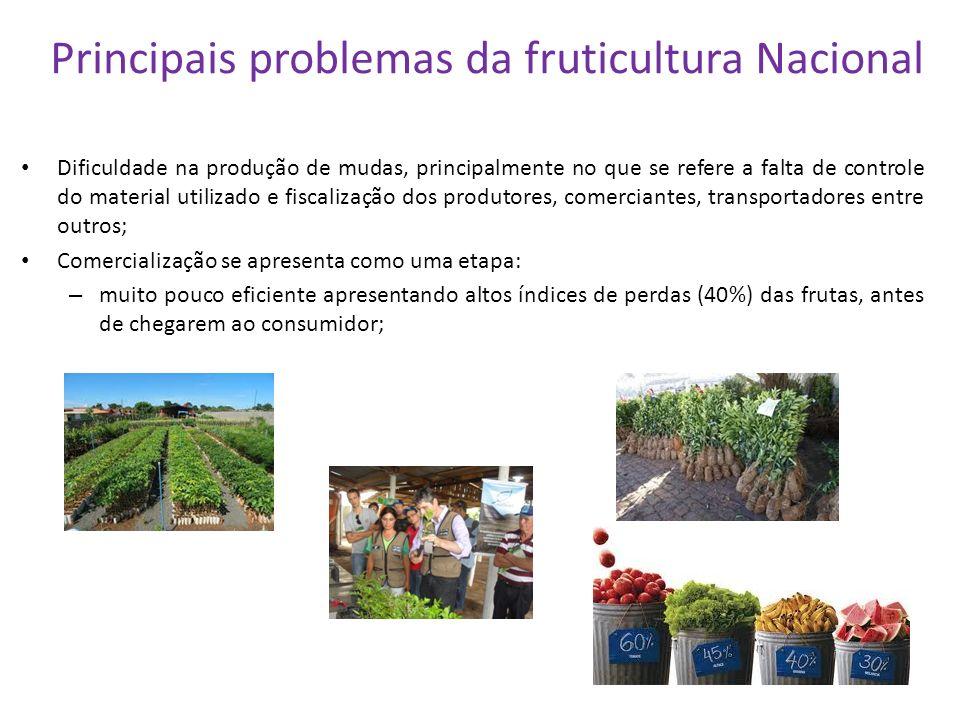 Principais problemas da fruticultura Nacional Dificuldade na produção de mudas, principalmente no que se refere a falta de controle do material utiliz