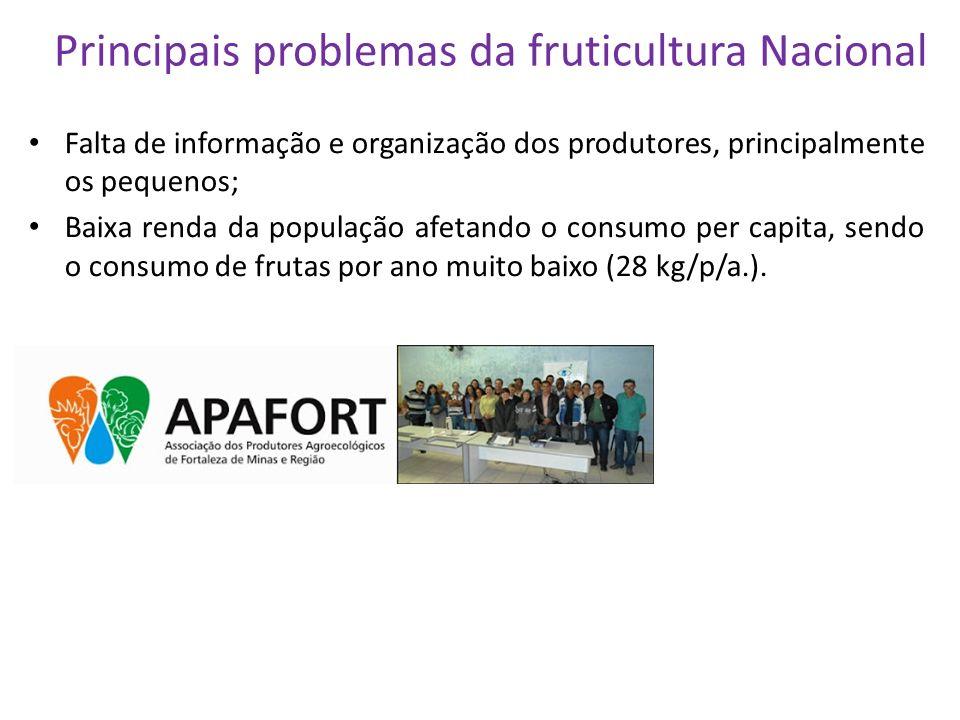 Principais problemas da fruticultura Nacional Falta de informação e organização dos produtores, principalmente os pequenos; Baixa renda da população a