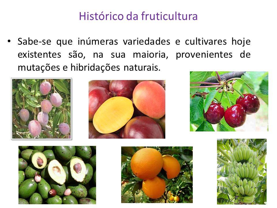 Histórico da fruticultura Sabe-se que inúmeras variedades e cultivares hoje existentes são, na sua maioria, provenientes de mutações e hibridações nat