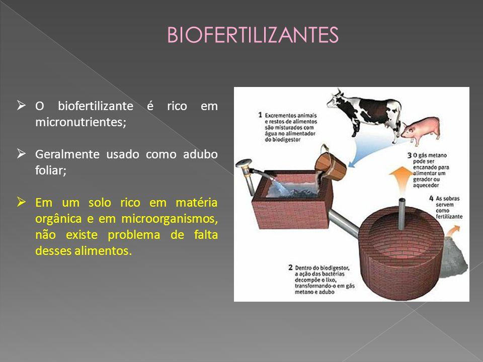 BIOFERTILIZANTES O biofertilizante é rico em micronutrientes; Geralmente usado como adubo foliar; Em um solo rico em matéria orgânica e em microorganismos, não existe problema de falta desses alimentos.
