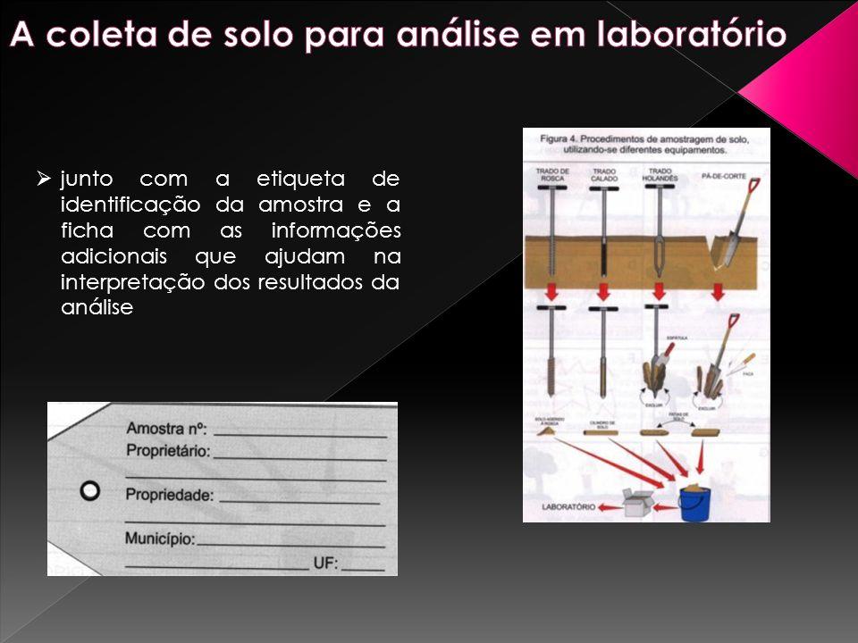 junto com a etiqueta de identificação da amostra e a ficha com as informações adicionais que ajudam na interpretação dos resultados da análise