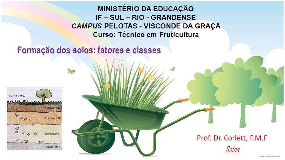 MINISTÉRIO DA EDUCAÇÃO IF – SUL – RIO - GRANDENSE CAMPUS PELOTAS - VISCONDE DA GRAÇA Curso: Técnico em Fruticultura Prof. Dr. Corlett, F.M.F Solos For