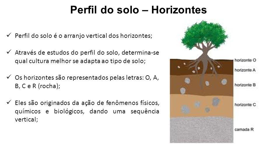 Perfil do solo é o arranjo vertical dos horizontes; Através de estudos do perfil do solo, determina-se qual cultura melhor se adapta ao tipo de solo;