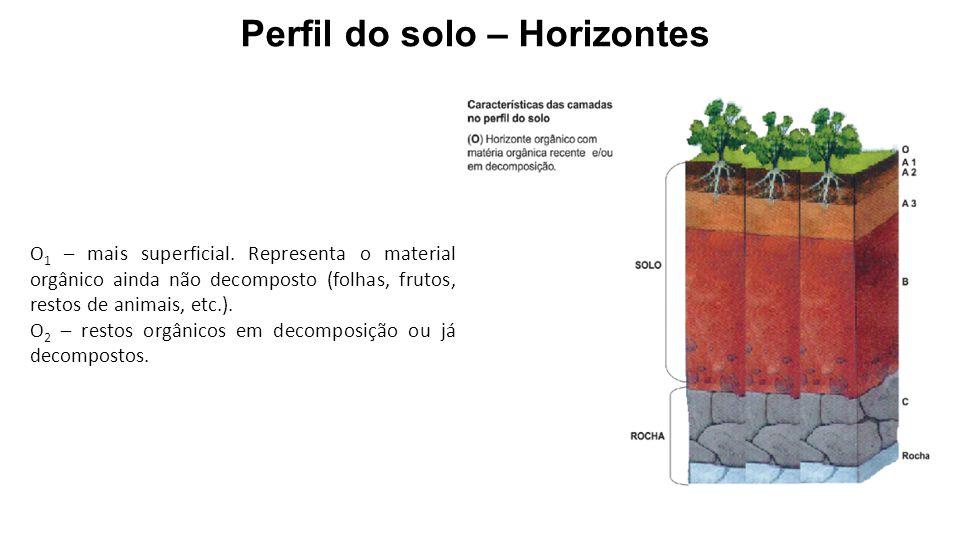 O 1 – mais superficial. Representa o material orgânico ainda não decomposto (folhas, frutos, restos de animais, etc.). O 2 – restos orgânicos em decom