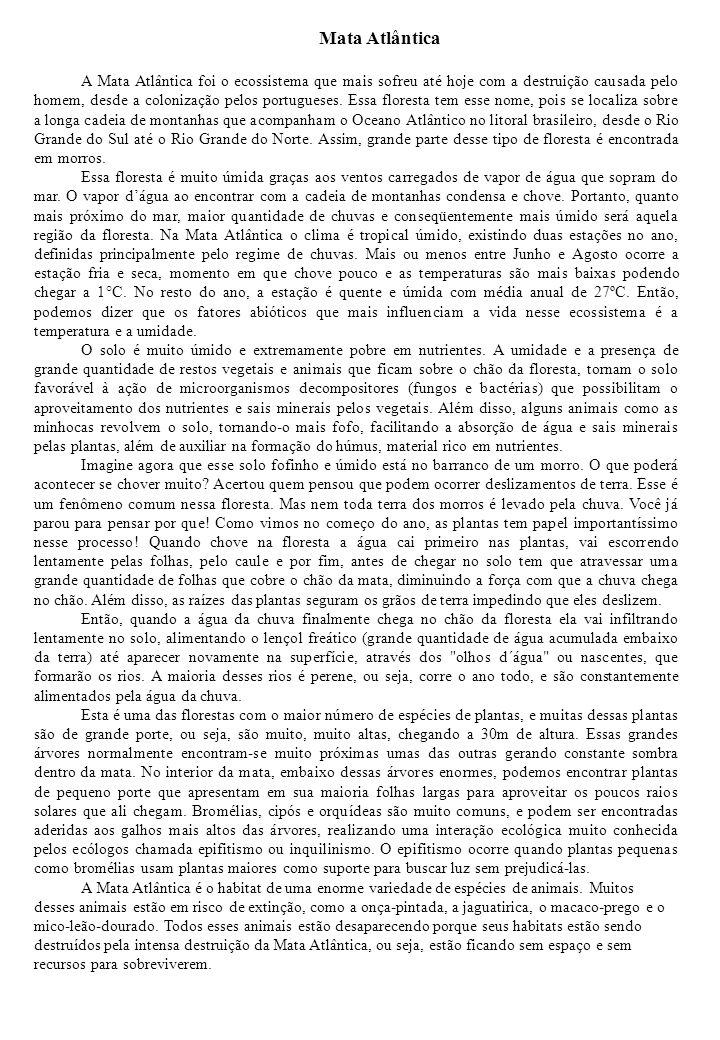 Mata Atlântica A Mata Atlântica foi o ecossistema que mais sofreu até hoje com a destruição causada pelo homem, desde a colonização pelos portugueses.
