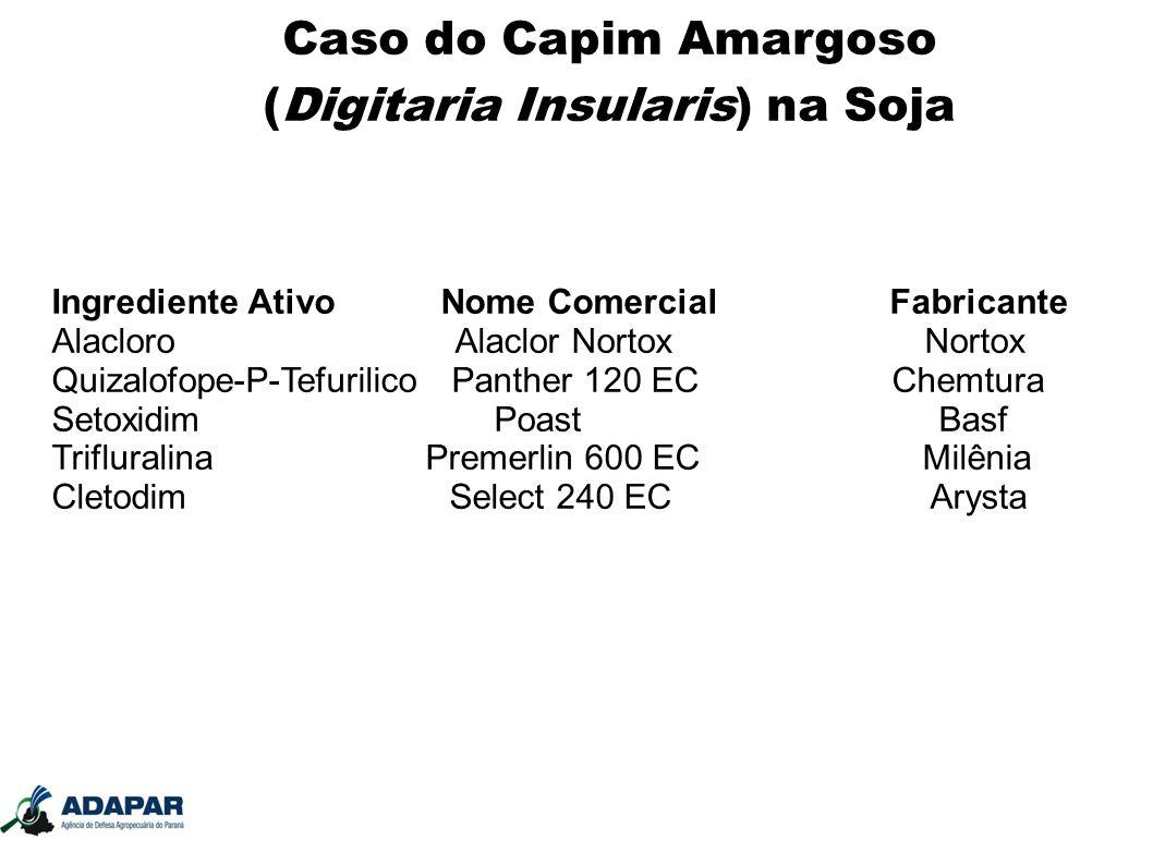 Caso do Capim Amargoso (Digitaria Insularis) na Soja Ingrediente Ativo Nome Comercial Fabricante Alacloro Alaclor Nortox Nortox Quizalofope-P-Tefurili