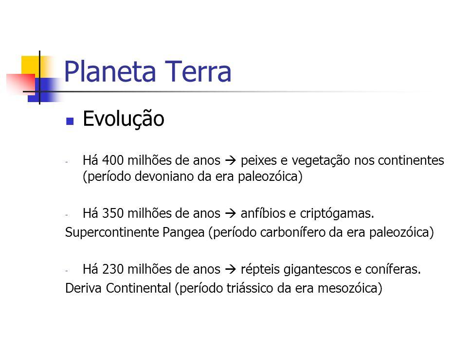 Planeta Terra Evolução - Há 400 milhões de anos peixes e vegetação nos continentes (período devoniano da era paleozóica) - Há 350 milhões de anos anfíbios e criptógamas.