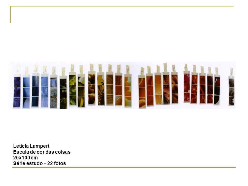 Letícia Lampert Escala de cor das coisas 20x100 cm Série estudo – 22 fotos