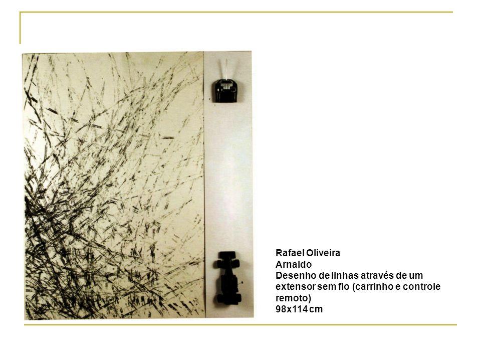 Rafael Oliveira Arnaldo Desenho de linhas através de um extensor sem fio (carrinho e controle remoto) 98x114 cm