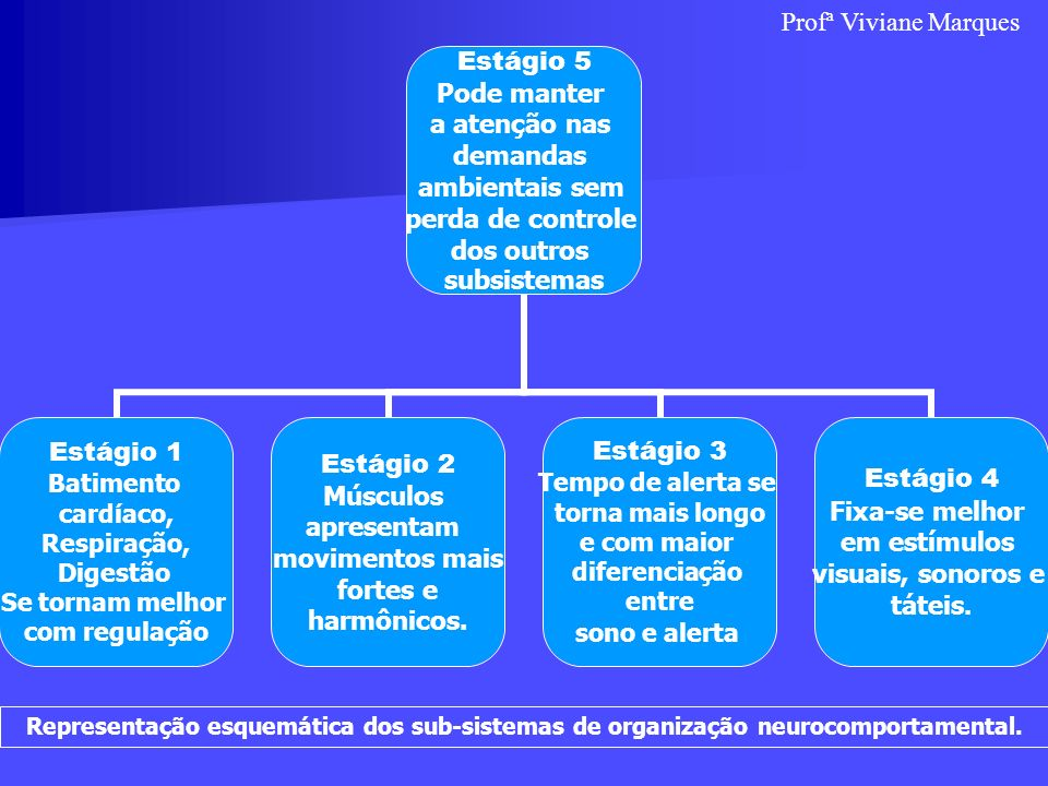 Estágio 5 Pode manter a atenção nas demandas ambientais sem perda de controle dos outros subsistemas Estágio 1 Batimento cardíaco, Respiração, Digestã