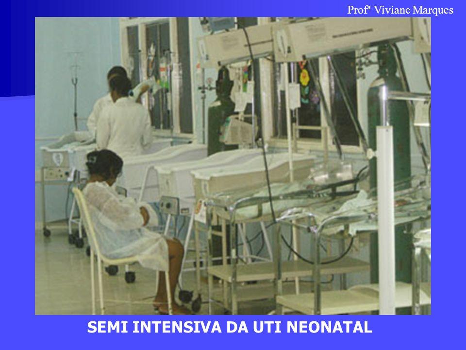 SEMI INTENSIVA DA UTI NEONATAL Profª Viviane Marques