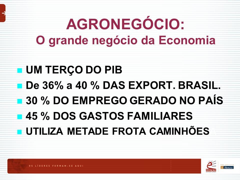 AGRONEGÓCIO: O grande negócio da Economia UM TERÇO DO PIB De 36% a 40 % DAS EXPORT. BRASIL. 30 % DO EMPREGO GERADO NO PAÍS 45 % DOS GASTOS FAMILIARES
