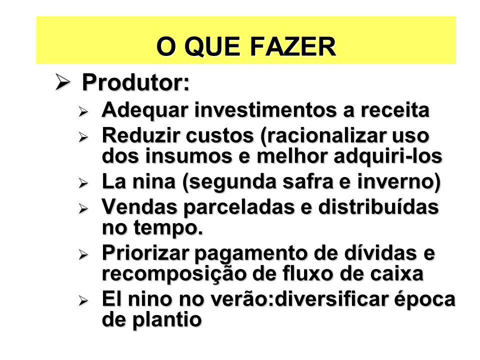 O QUE FAZER Produtor: Produtor: Adequar investimentos a receita Adequar investimentos a receita Reduzir custos (racionalizar uso dos insumos e melhor