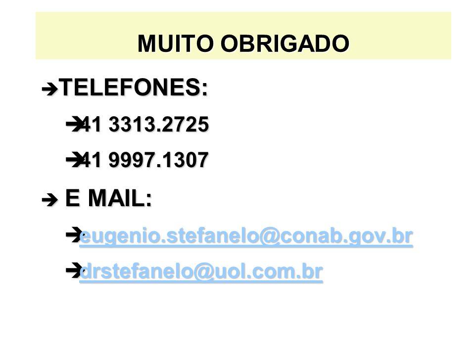 MUITO OBRIGADO è TELEFONES: è41 3313.2725 è41 9997.1307 è E MAIL: èeugenio.stefanelo@conab.gov.br eugenio.stefanelo@conab.gov.br èdrstefanelo@uol.com.
